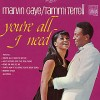 Marvin Gaye and Tammi Terrell – Youre all I need