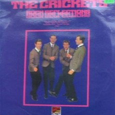 The crickets – Rock reflections