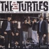 Turtles – It aint me babe