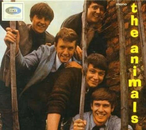 Animals – The amimals