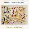 Devadip Carlos Santana – The swing of delight
