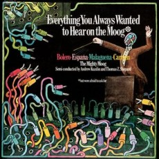 Various – Everthing you always wanted to hear on the moog