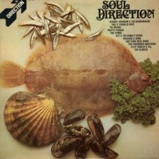 Various – Soul direction